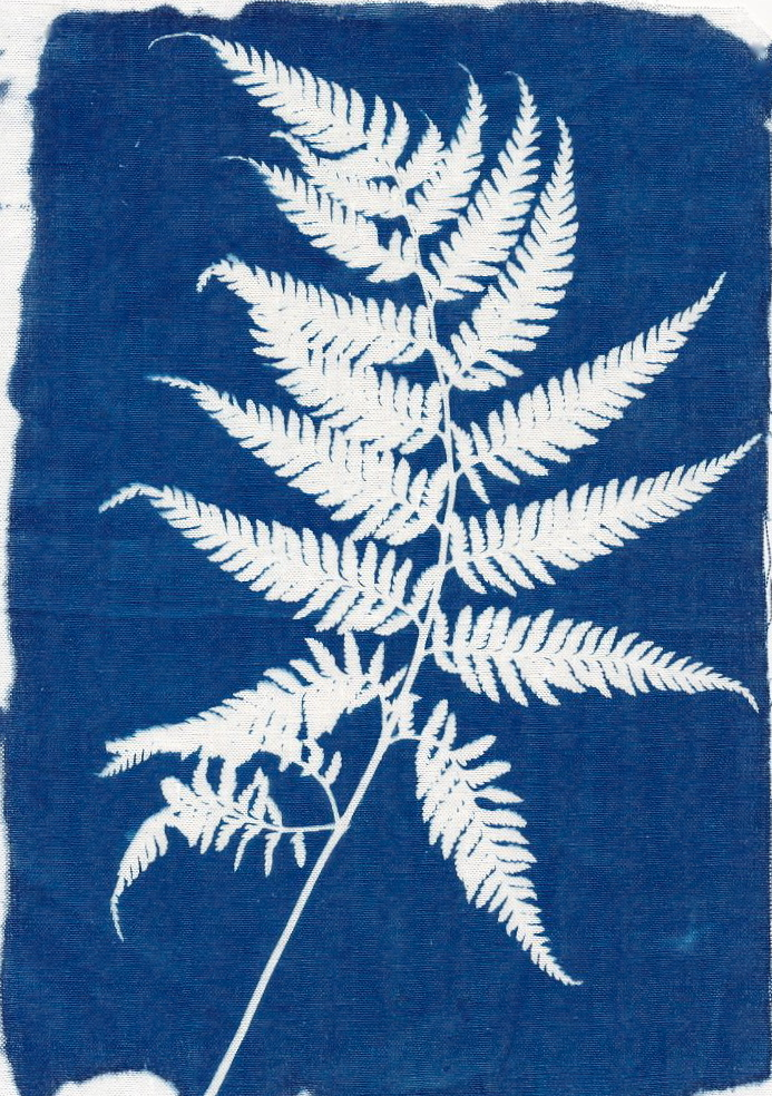 wild fern #3 printed on linen/麻布にプリント