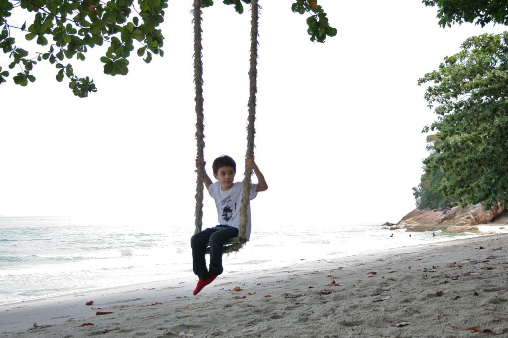 monkey beach2