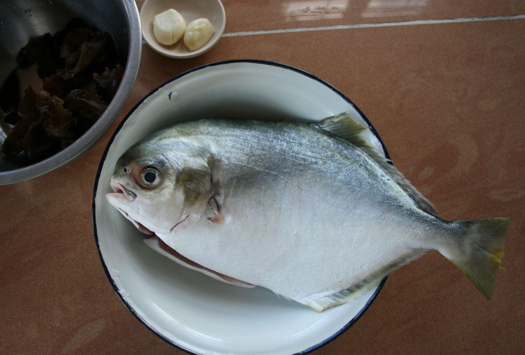 新鮮な魚は蒸します。Golden pomfret