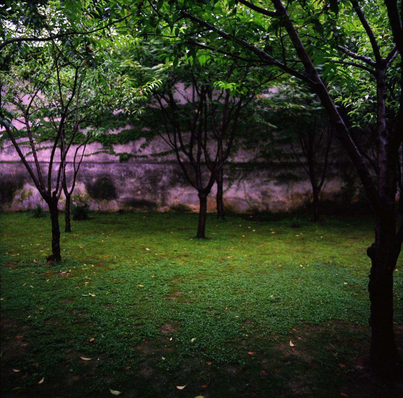蘇州留園 / Lu Garden, Suzhou, China, July 2014