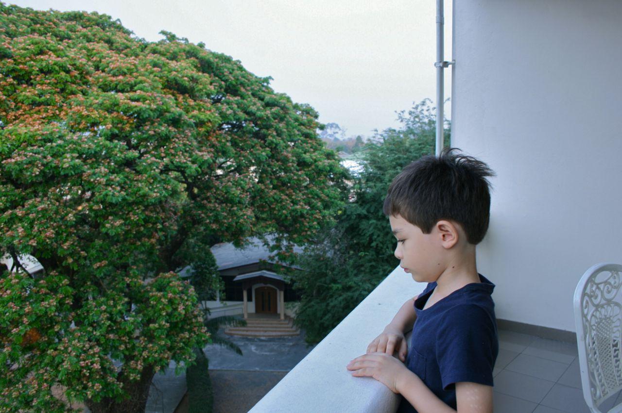 View from our hotel balcony. 宿のバルコニーにて。空が曇っているのではなくて、空気が悪くて霞んでいます。
