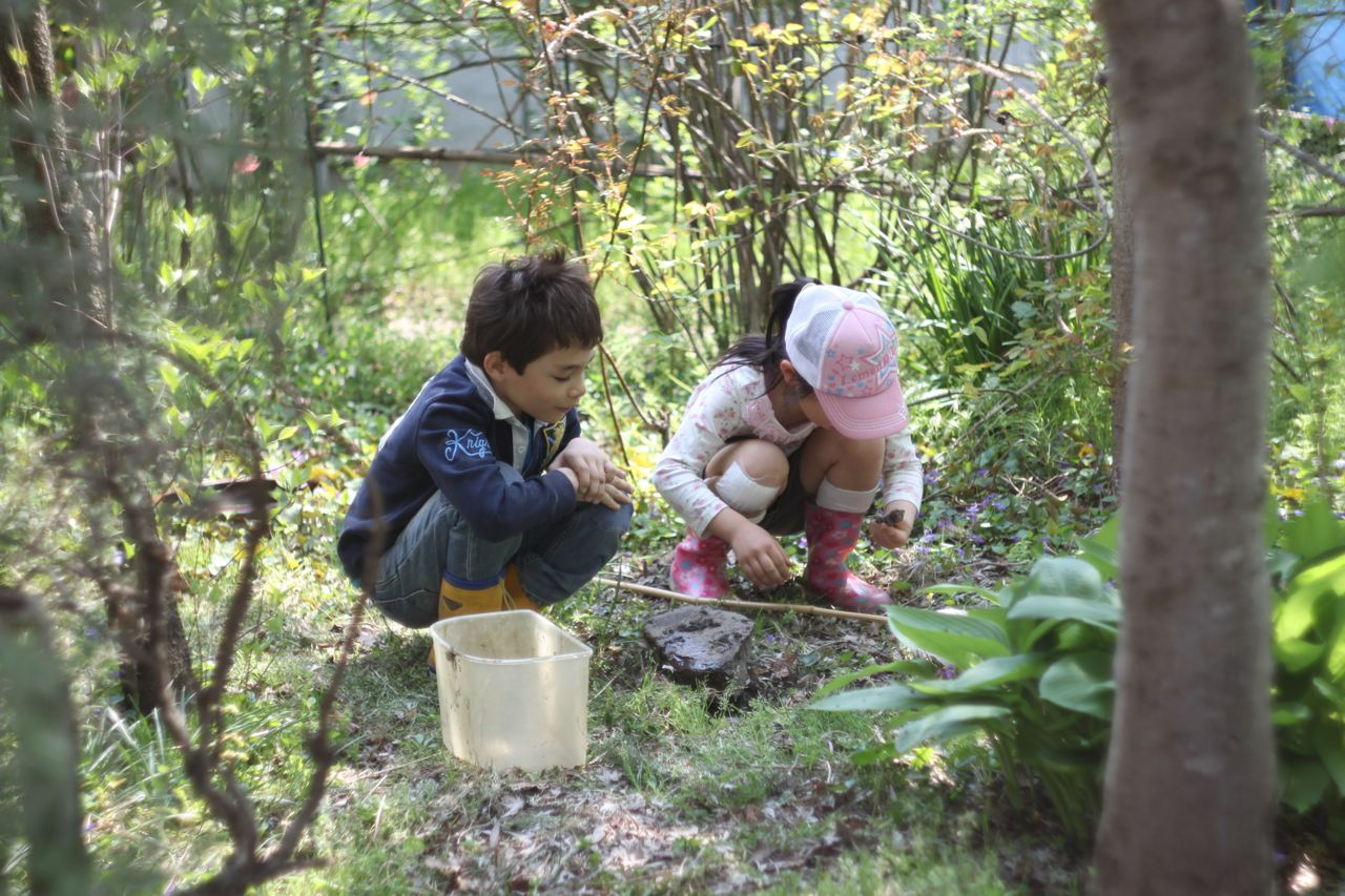 My son and niece fascinated by sow bugs in the garden in front of our house. ダンゴムシ探しに夢中なふたり