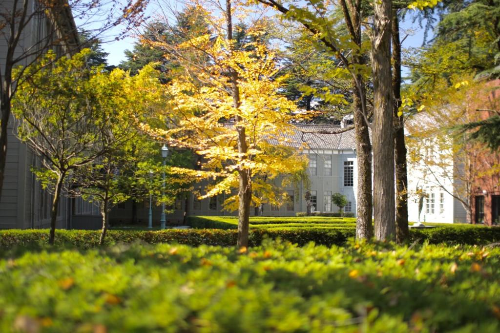 公園内にある校舎。紅葉がはじまっています。
