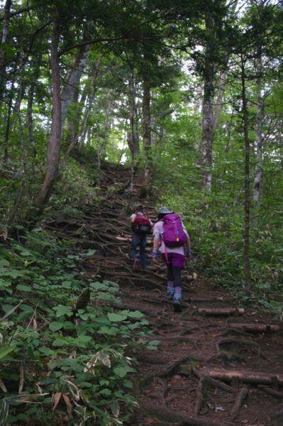 飯綱山の登山道に入ったところ