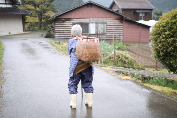 移動スーパーへ、休み休み向かうおばあちゃん。かごに注目。
